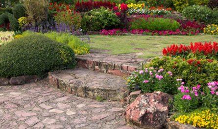 ogrod kwiatowy