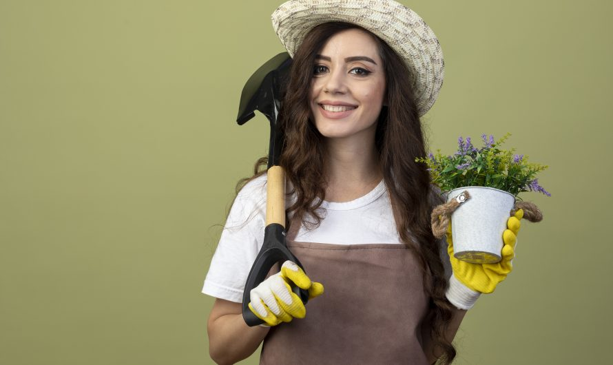 Jak dobrze dbać o ogród? 5 praktycznych rad